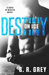 Destiny on Ice (Boys of Winter Book 1) - S.R. Grey