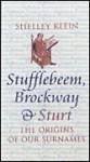 Stufflebeem, Brockway and Sturt - Shelley Klein