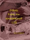 Echoes From An Unexamined Life - Steve Sagarra