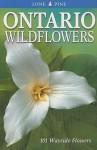 Ontario Wildflowers: 101 Wayside Flowers - Linda Kershaw