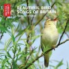 Beautiful Bird Songs of Britain: The Music of Nature - The British Library