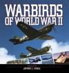 Warbirds of World War II - Jeffrey L. Ethell