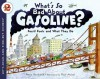 What's So Bad About Gasoline?: Fossil Fuels and What They Do - Anne F. Rockwell, Paul Meisel