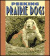 Peeking Prairie Dogs - Christine Zuchora-Walske