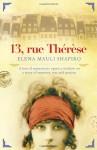 13 Rue Thérèse - Elena Mauli Shapiro