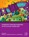 Transduction Mechanisms in Cellular Signaling: Cell Signaling Collection (Cell Signaling Series) - Edward A. Dennis, Ralph A. Bradshaw