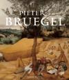 Pieter Bruegel - Larry Silver