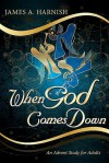 When God Comes Down: An Advent Study for Adults - James A. Harnish