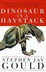 Dinosaur in a Haystack - Stephen Jay Gould