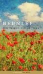 Een vriend van vroeger - J. Bernlef