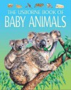 Baby Animals: Young Nature - Jo Litchfield