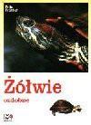 Żółwie ozdobne - Fritz Fröhlich