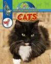 Cats - Slim Goodbody