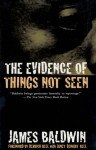The Evidence of Things Not Seen: Reissued Edition - James Baldwin