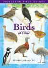 Birds of Chile (Princeton Field Guides) - Alvaro Jaramillo, David Beadle, Peter Burke
