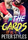 In The Cards: M/M Gay Romance - Peter Styles