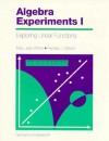 Algebra Experiments - Mary Jean Winter