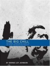 The Big Chill: The Great, Unreported Story of the Bush Inauguration Protest - Dennis Loy Johnson
