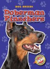 Doberman Pinschers - Sara Green