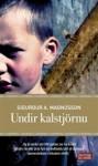 Undir kalstjörnu - Sigurður A. Magnússon