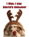 I Wish I was Santa's Reindeer - Dan Jackson