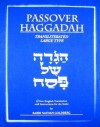 Passover Haggadah: A New English Translation and Instructions for the Seder - Nathan Goldberg