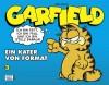 Garfield 3 - Jim Davis
