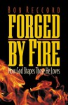 Forged by Fire: How God Shapes Those He Loves - Bob Reccord, Bob E. Reccord