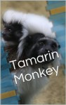 Tamarin Monkey Picture Book - Patricia Foster