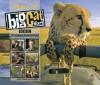 Big Cat Diary - Jonathan Scott, Angie Scott, Angela Scott