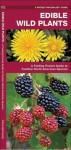 Edible Wild Plants: A Folding Pocket Guide to Familiar North American Species - James Kavanagh