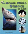 Great White Sharks Up Close - Carmen Bredeson
