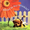 What Is Mr. Winkle? (Step Back in Time with Mr. Winkle) - Lara Jo Regan
