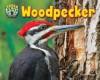 Woodpecker - Dee Phillips