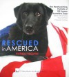 Rescued in America (The Photo Book Projects, Volume 2) - Melissa McDaniel