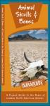 Animal Skulls & Bones: A Folding Pocket Guide to the Bones of Common North American Animals - James Kavanagh, Raymond Leung