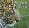 Big Five Of Africa - Gerald Hinde