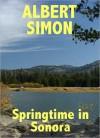 Springtime in Sonora - Albert Simon