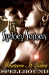 Whatever It Takes - Sydney Somers