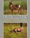 Deer and Elk - Dorothy Hinshaw Patent