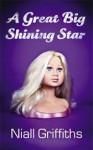 A Great Big Shining Star - Niall Griffiths