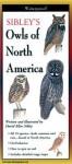 Sibley's Owls of North America (Foldingguides) - David Allen Sibley