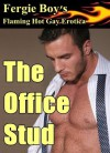 The Office Stud (Flaming Hot Gay Erotica) - Fergie Boy