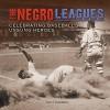 The Negro Leagues: Celebrating Baseball's Unsung Heroes (Spectacular Sports) - Matt Doeden