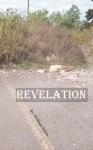 Revelation - William Sweet, Will Mcleod