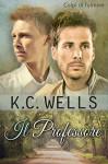 Il Professore (Colpi di Fulmine Vol. 1) - K.C. Wells, Meredith Russell, Deborah Tessari