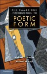 Poetic Form: An Introduction: An Introduction - Michael O'Neill, Michael D. Hurley