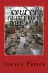 Wordsplash Poetry Puddle Tread Water - Joanne Faries