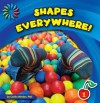 Shapes Everywhere (21st Century Basic Skills Library) - Cecilia Minden