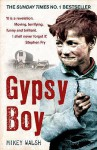 Gypsy Boy: One Boy's Struggle To Escape From A Secret World - Mikey Walsh